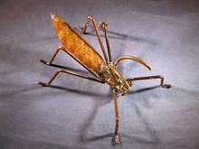 Iron Grasshopper Garden Sculpture or Paperweight Hand Made in Mexico