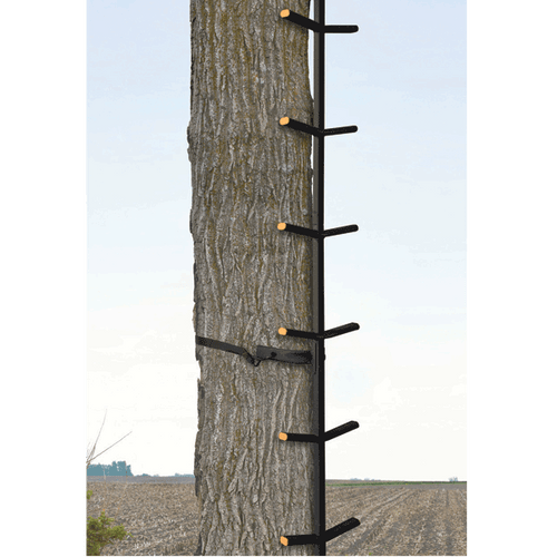 Muddy Ascender Tree Stand Climbing System on a tree