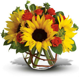 webflowers-newsite-blog.jpg