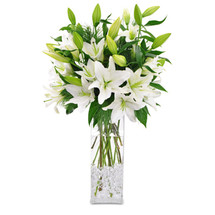 PURE WHITE LILIES