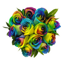 Surprisingly colorful roses come with multicolored blooms in shades of blue, yellow and pink.