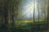 Sacred Grove 24x36  LE Signed & Numbered - Giclee Canvas
