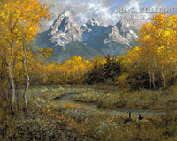 Golden View 28 x 35 - Giclee Canvas
