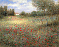 Field of Colors 16x24 LE Signed & Numbered - Giclee Canvas
