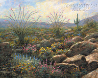 Desert Bloom 24x30 LE Signed & Numbered - Giclee Canvas