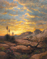 Zion Sunset 24x30 LE Signed & Numbered - Giclee Canvas