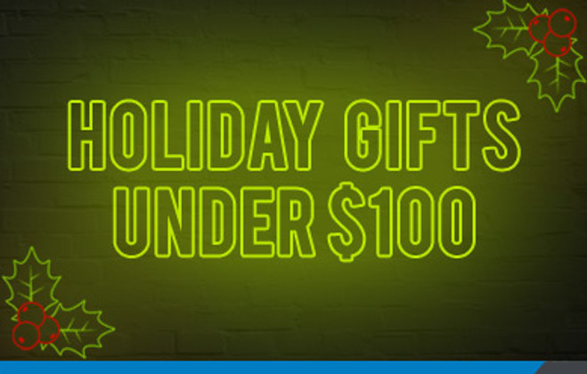 Holiday Gifts for under $100