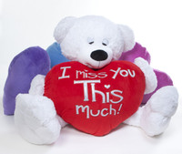 "His big teddy bear plush heart pillow boldly states ""I Miss You THIS Much""!"