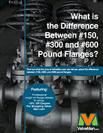 diff-between-150-300-600-pound-flanges-ebook-cover.jpg