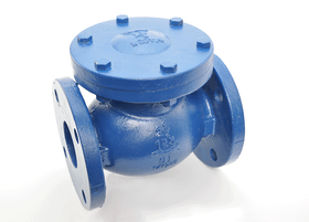 Red White Iron Swing Check Valve