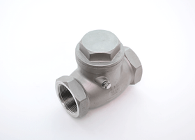 Red-White Swing Check Valve