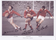Welsh Rugby Legends Signed by 3 - 16x12 Montage