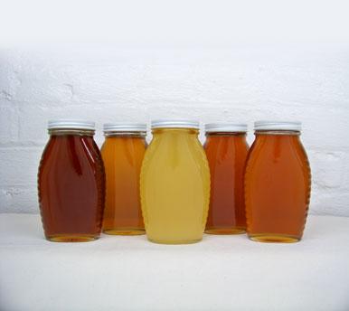 honey-new.jpg
