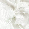 7/8 White Glitter Grosgrain available in 25 yd rolls.