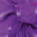 Purple Pirouette Sheer / Satin Ribbon