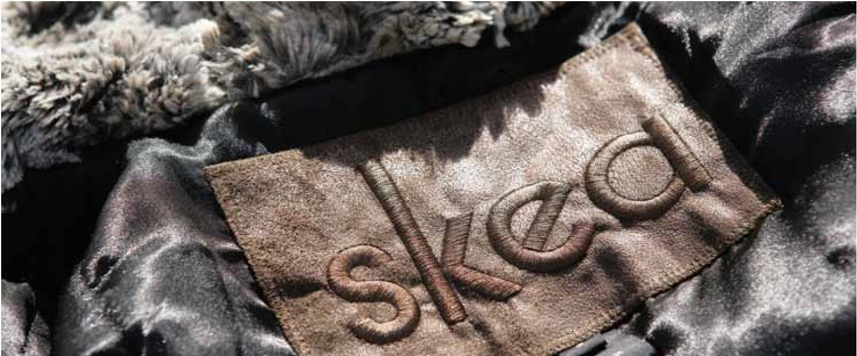 skea-banner-logo.jpg