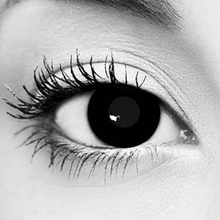Black Out FX Contact Lenses – Gothika – Pair