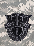 Special Forces Crest Patch