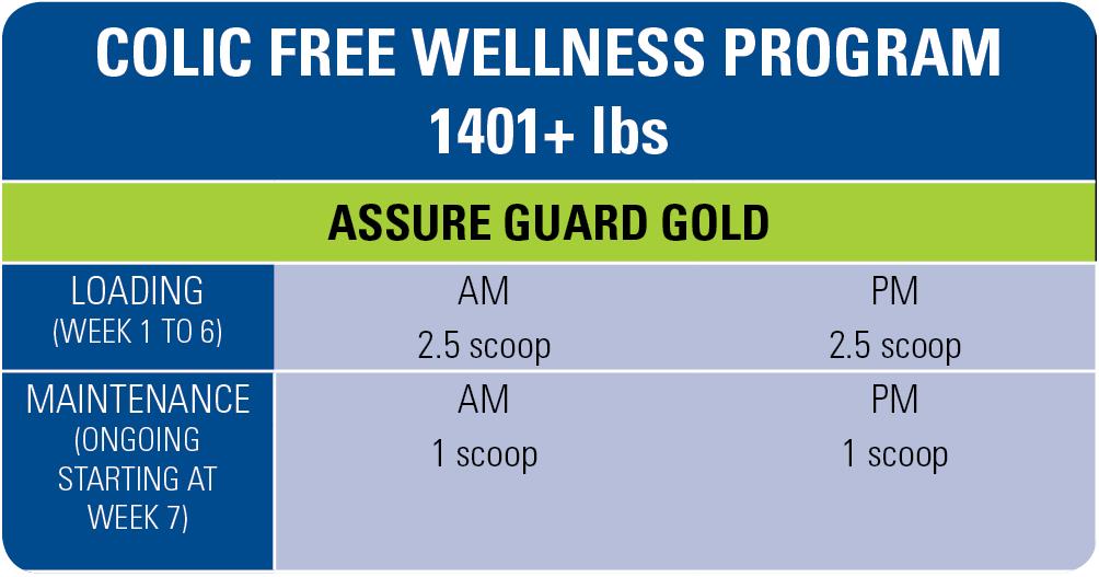 free3-wellness-program-1401