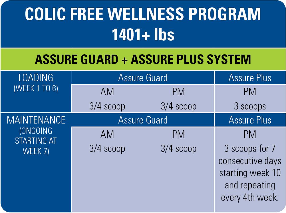 free-wellness-program-1401