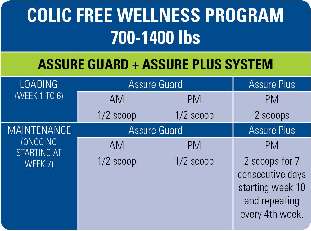 free-wellness-program-700-1400