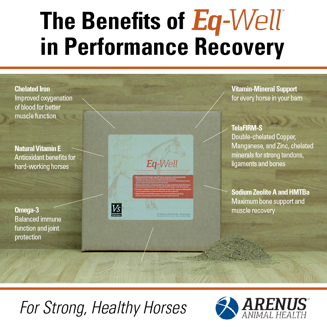 The Benefits of Eq-Well in Performance Recovery