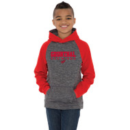 GRW ATC Youth Dynamic Heather Fleece Hooded Sweatshirt - Charcoal Dynamic (GRW-302-CD)