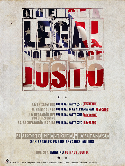 Spanish Just Because It's Legal Poster