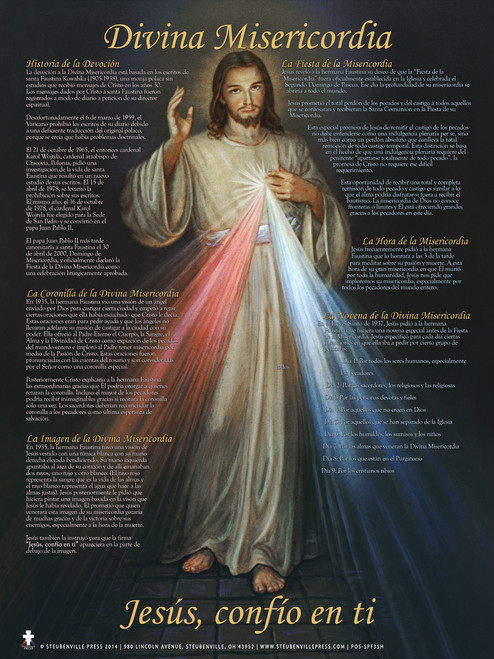 Spanish Divine Mercy Explained Poster