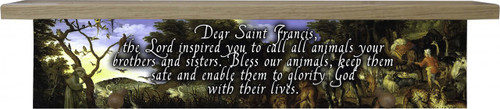 St. Francis Animal Shelf
