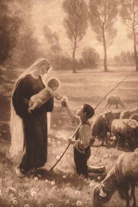 Gift of the Shepherd Holy Card