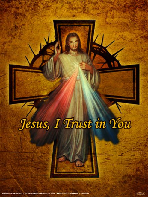 Divine Mercy Cross Poster