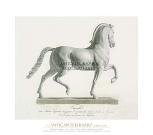Horse for an Equestrian Statue Paper Print