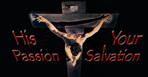 His Passion, Your Salvation Vinyl Bumper Sticker