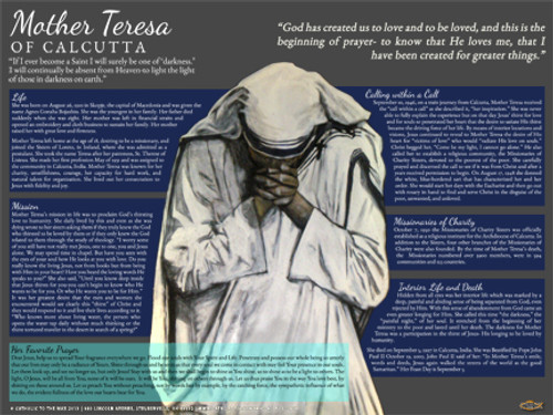 Mother Teresa Explained Poster