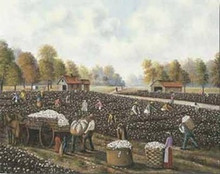 Cotton Picking Art Print - Hulis Mavruk