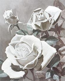 White Roses--M.Hornbuckle