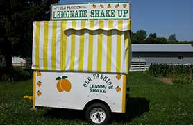 EZ Outdoors Lemonade Stand Custom Cover