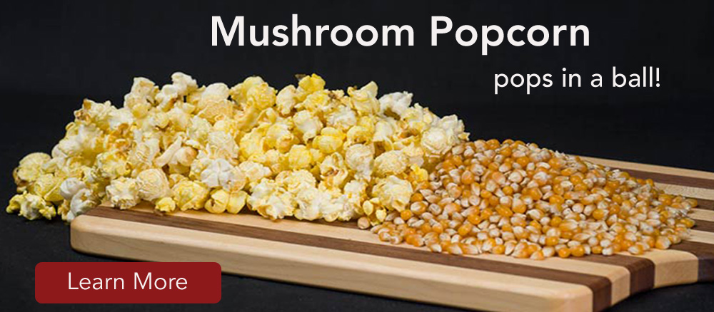 Amish Country Popcorn ruby red popcorn
