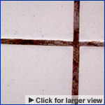 Damaged Grout
