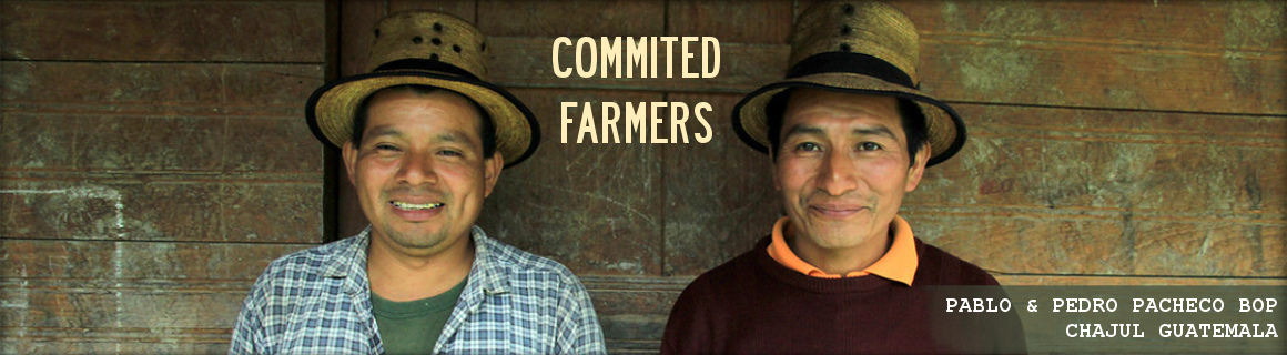 Our coffee farmers are commited to providing us the highest quality beans