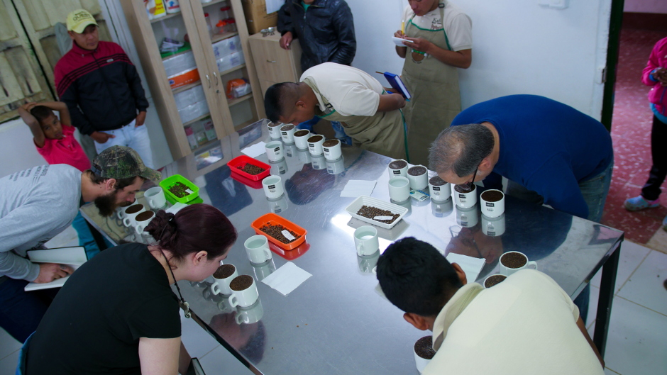 Coffee Cupping in Cauca Colombia