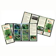 9 X 16 Brochure