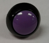 P9-113127 Otto Two Circuit Momentary Push Button Switch with Flush Violet Button