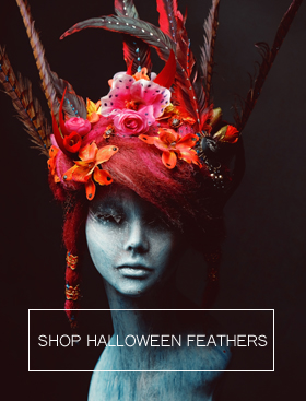 halloween-feathers-280x376.jpg