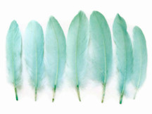 1 Pack - Aqua Blue Goose Satinettes Loose Feathers 0.3 Oz.