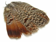 1 Piece - Natural Hungarian Partridge Tail Feathers