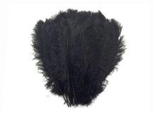 "1/2 Lb - 14-17"" Black Ostrich Large Drab Wholesale Feathers (Bulk)"