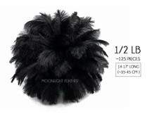 """1/2 Lb - 14-17"""" Black Ostrich Large Drab Wholesale Feathers (Bulk)"""