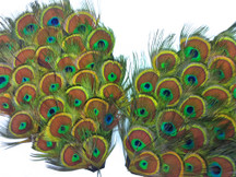 1 Piece - Natural Peacock Tiny Eyes Feather Pad